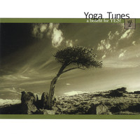 Yoga Tunes Volume II by Michael Cerda